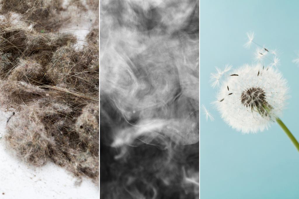 dust smoke pollen